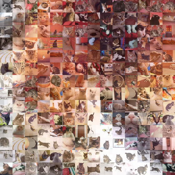 Cat photo mosaic done on www.Pictosaic.com - Total number of tiles: 5400 - Sample version